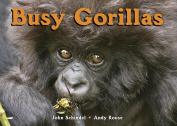 Busy Gorillas [Board Book]