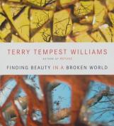 Finding Beauty in a Broken World [Audio]
