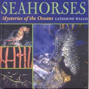 Seahorses and Seadragons