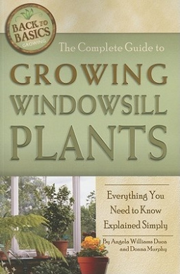 Complete Guide to Growing Windowsill Plants: Everything You Need to Know Explained Simply
