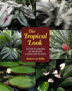 The Tropical Look