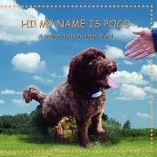 Hi! My Name Is Poco