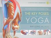 Key Poses of Yoga