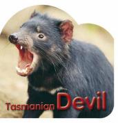 Tasmanian Devil [Board book]