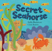Secret Seahorse (Hide-And-Seek Books