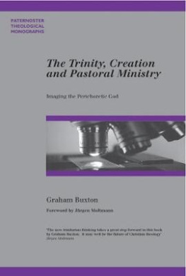 The Trinity, Creation and Pastoral Ministry: Imaging the Perichoretic God (Paternoster Biblical & Theological Monographs)