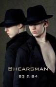 Shearsman 83 and 84