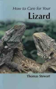 How to Care for Your Lizard