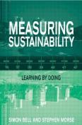 Measuring Sustainability
