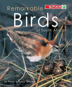 Remarkable birds of South Africa