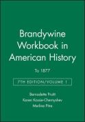 Workbook in American History