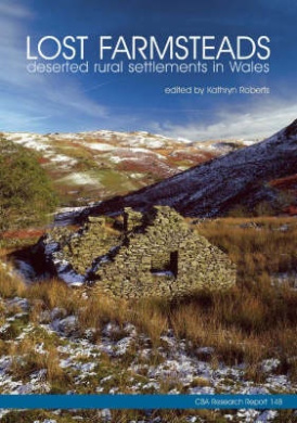 Lost Farmsteads: Deserted Rural Settlement in Wales (CBA Research Reports)