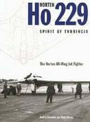 """Horten Ho229 """"Spirit of Thuringia"""""""