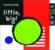 (Amazing Baby) [Board book]
