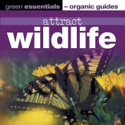 Attract Wildlife