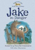Jake in Danger