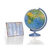 Activity Illuminated Globe