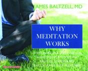 Why Meditation Works