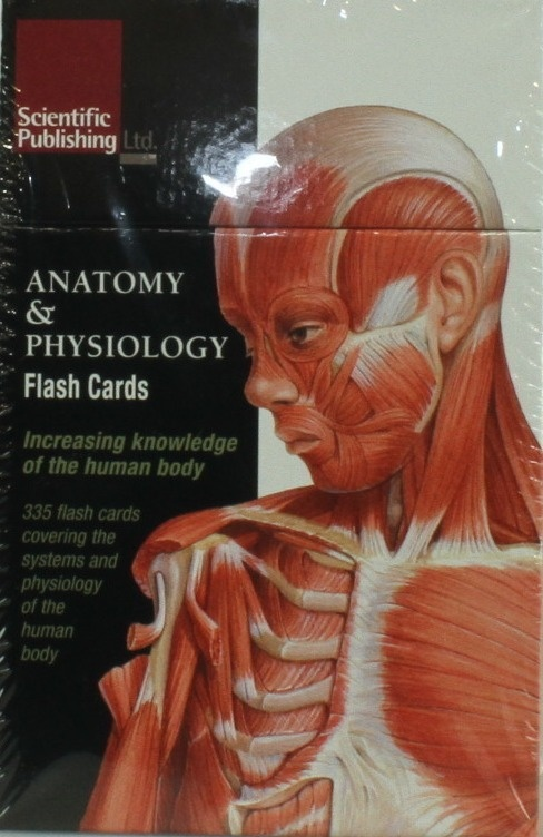 Anatomy Flash Cards Books Buy Online From Fishpond