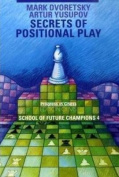 Secrets of Positional Play