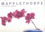 Mapplethorpe Flowers 2007
