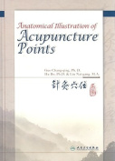 Anatomical Illustration of Acupuncture Points