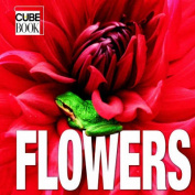 Flowers: Minicube
