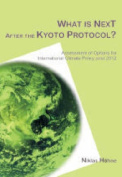 What is Next After the Kyoto Protocol?
