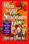 Where the Wild Strawberries Grow