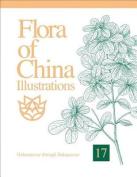 Flora of China Illustrations, Volume 17