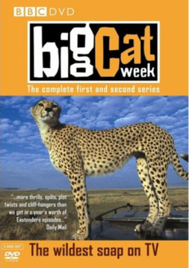 Big Cat Week: Series 1 and 2