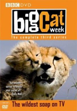 Big Cat Week: Series 3