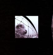 Vs./Vitalogy/Live at the Orpheum Theater, Boston, April 12, 1994 [Box]