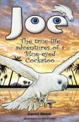 Joe the Blue-Eyed Cockatoo