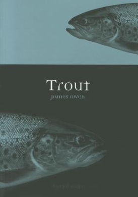 Trout (Animal)