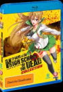 High School of the Dead Collection [Region B] [Blu-ray]