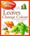 I Wonder Why Leaves Change Colour