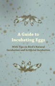 A Guide to Incubating Eggs - With Tips on Bird's Natural Incubation and Artificial Incubation
