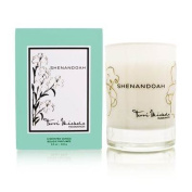 Shenandoah by Terri Michele A Scented Candle