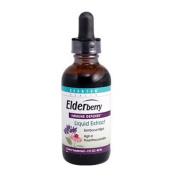 Elderberry Liquid 60ml