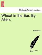 Wheat in the Ear. by Alien.