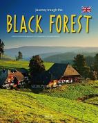 Journey Through the Black Forest (Journey Through