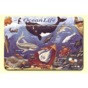 Painless Learning Ocean Life Placemat