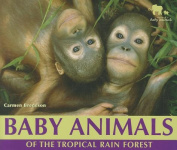 Baby Animals of the Tropical Rain Forest (Nature's Baby Animals