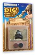 Dig! & Discover Kit