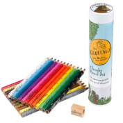 Wild and Wolf The Gruffalo Chunky Pencil Set