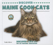 Discover Maine Coon Cats
