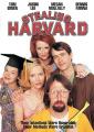 Stealing Harvard [Region 1]