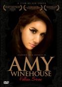 Amy Winehouse: Fallen Star [Region 2]
