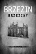 Brzezin Memorial Book
